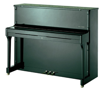Wilh. Steinberg IQ 24 Piano Black Polish