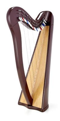 Roth & Junius RJCH-22BR Celtic Lever Harp