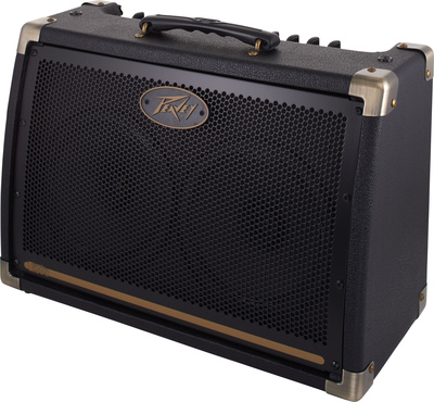 Peavey Ecoustic E208